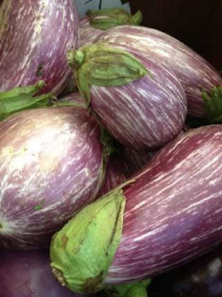 eggplant-01
