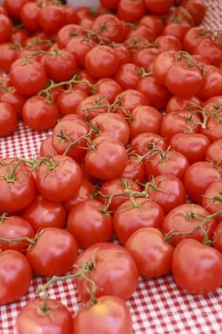 tomatoes-03